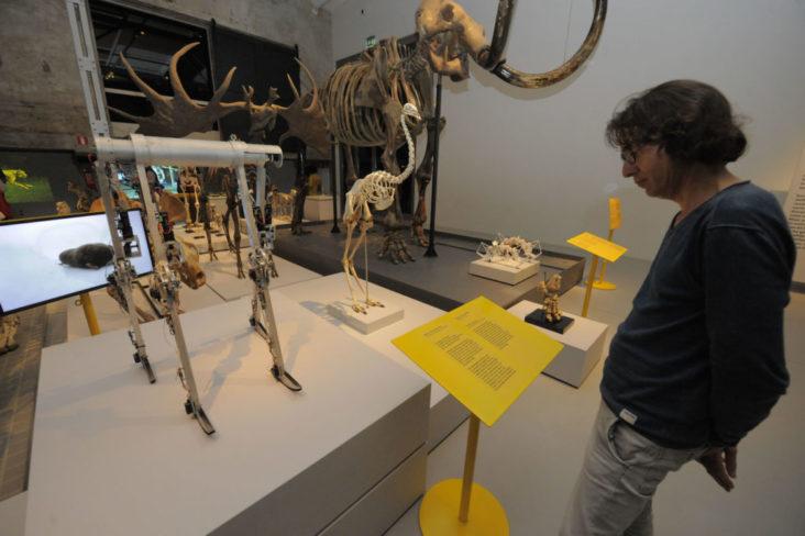 Tentoonstelling Van Nul to Duizendpoot in Museum Twentse Welle belicht door Beersnielsen